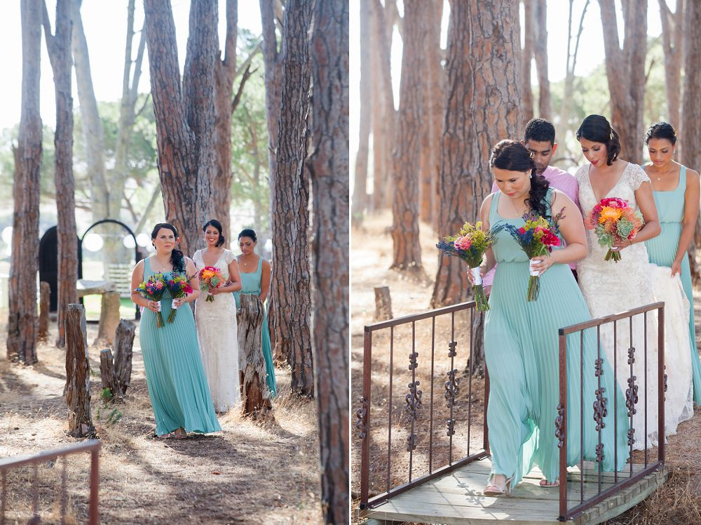 Winery Road Forest Wedding Expressions Photography 074