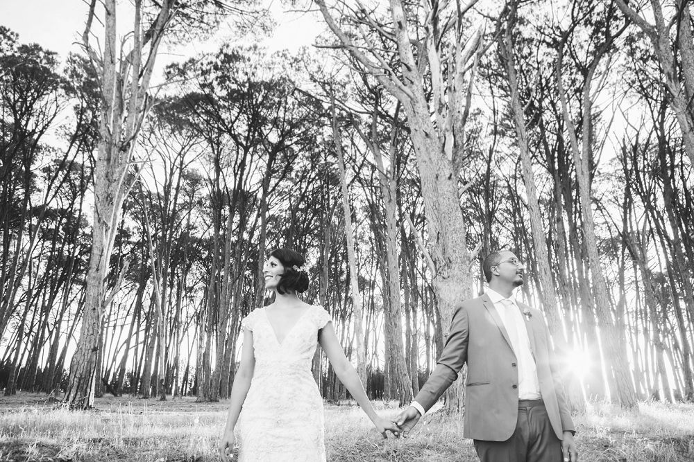 Winery Road Forest Wedding Expressions Photography 122