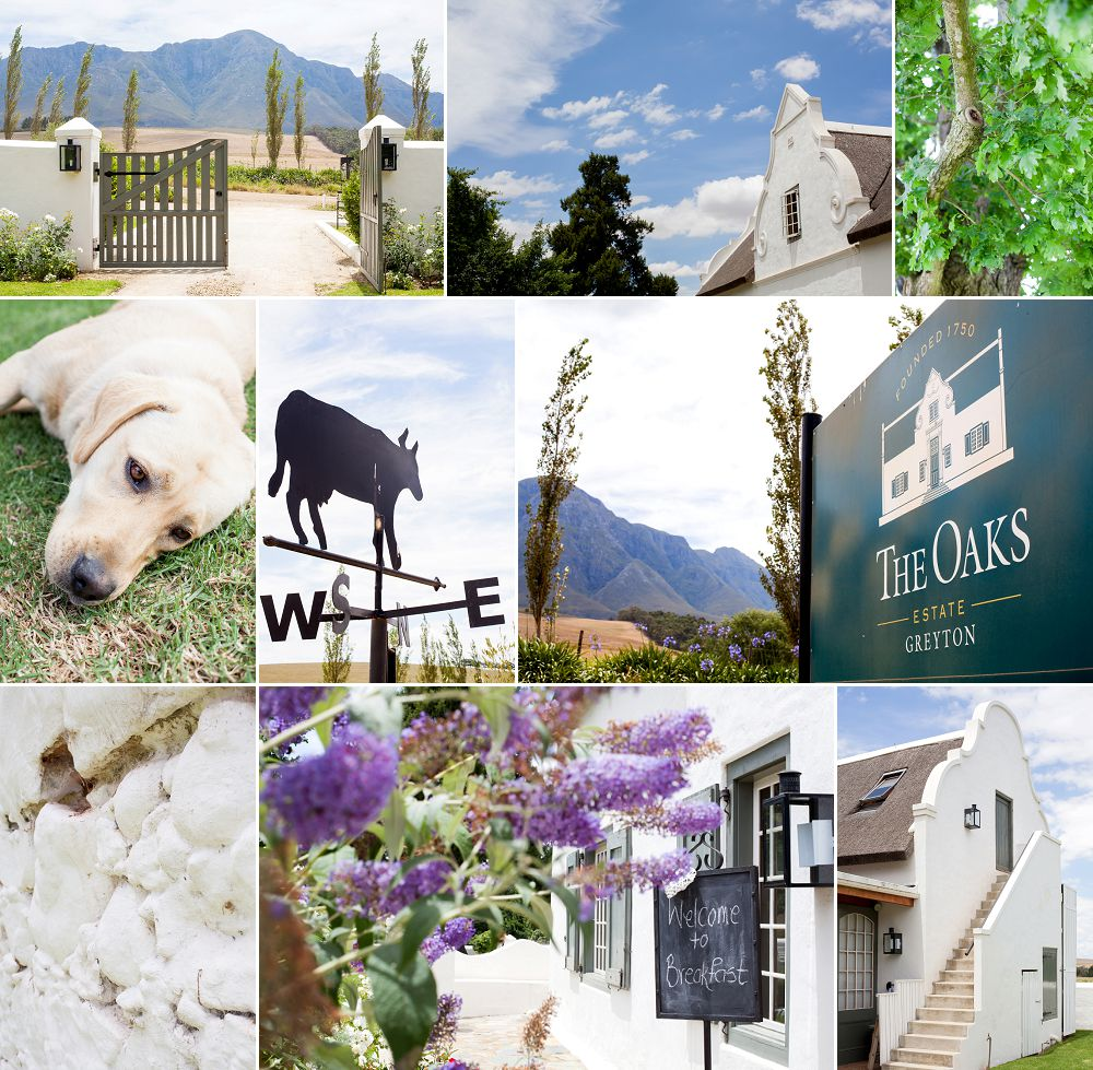 Greyton Wedding Expressions Photography Cape Town Wedding Photographers002