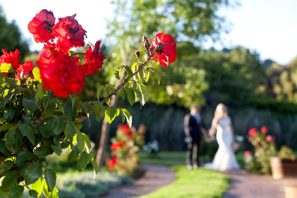 Rhebokslkoof Wedding Cape Town Wedding Photgraphers Expressions Photography 112