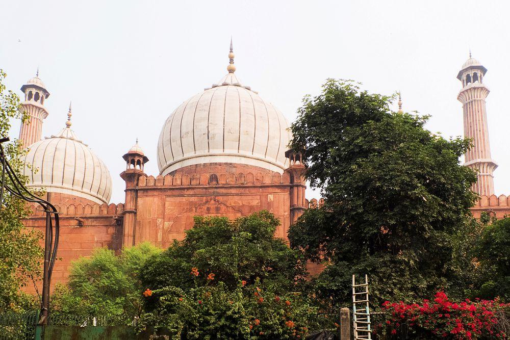 New Delhi Travel Expressions Photography 021