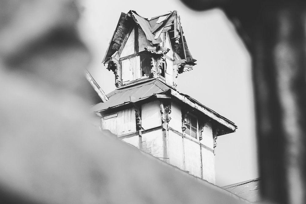 Shimla Travel Expressions Photography 021