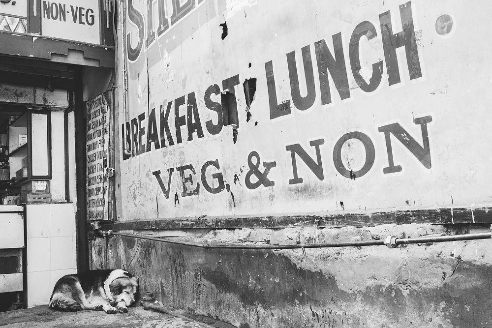 Shimla Travel Expressions Photography 051