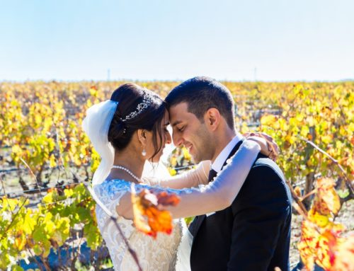Stellenbosch Autumn Wedding