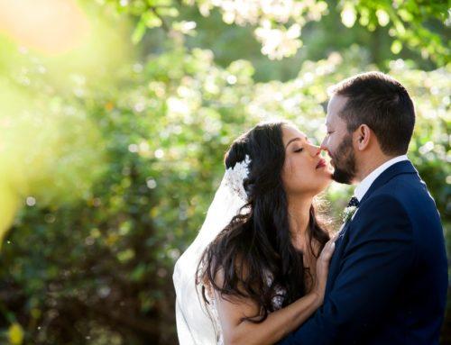 Abbey Rose Greyton Wedding