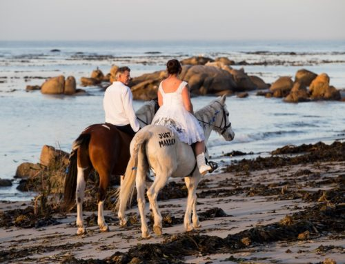 Intimate West Coast Wedding
